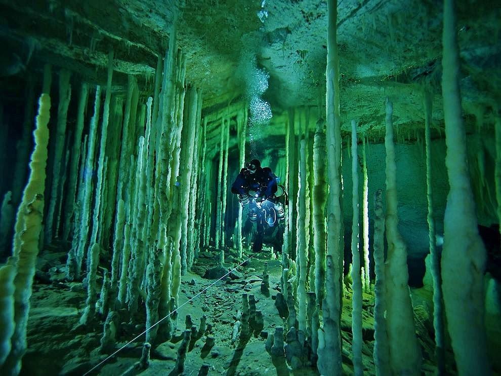 Playa Del Carmen Cave Diving Gallery of Diving Playa Del