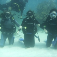 Wet Set Diving Adventures
