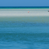 holbox cancun