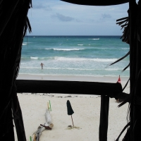 Beach Front Dive Tulum
