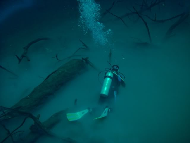 Cenote Angelita - Tulum, Quintana Roo