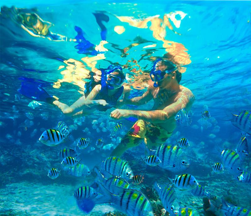World S Largest Natural Aquarium