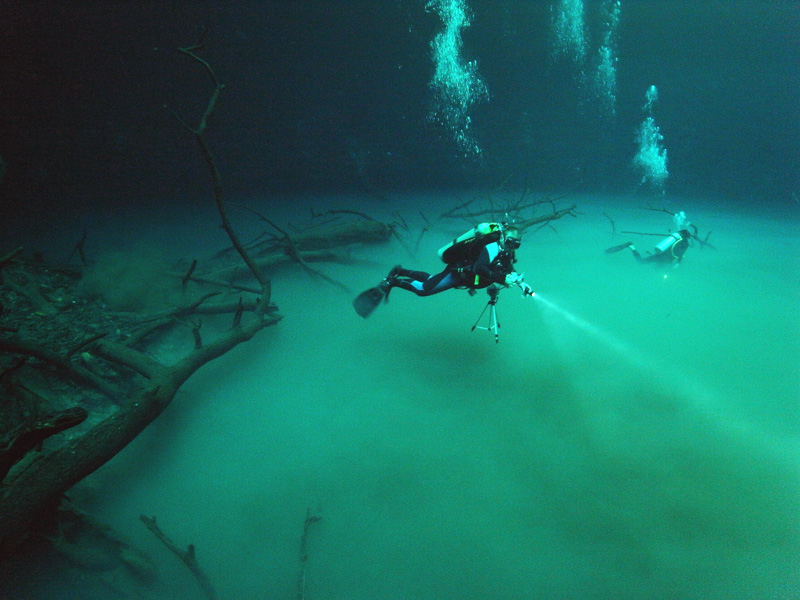 Angelita cenote diving