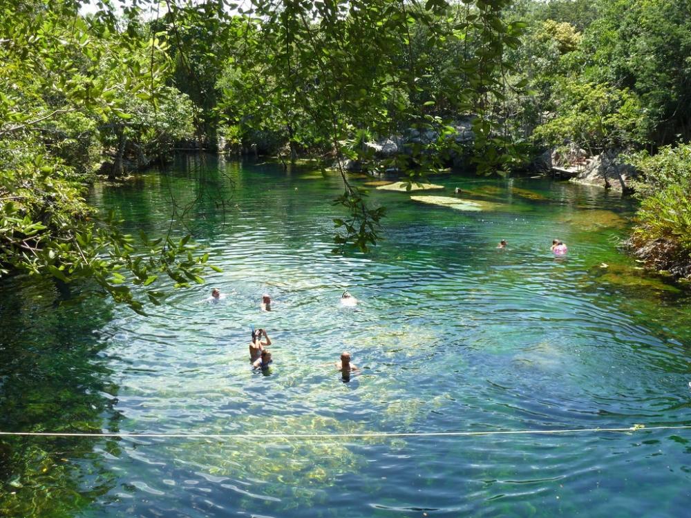 Cenote el eden ponderosa puerto aventuras quintana roo for El jardin del eden montornes