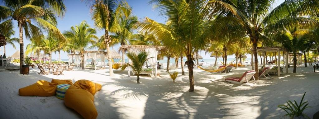 Tortugas Beach Club Cozumel