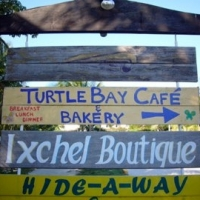 Turtle Bay Bakery & Cafe