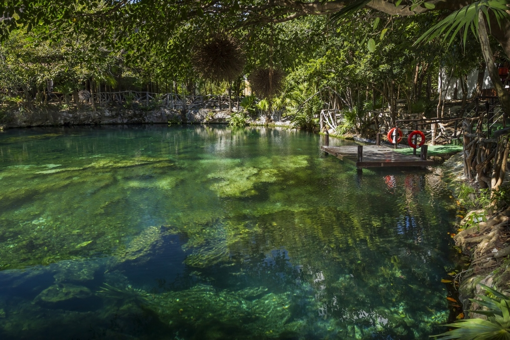 Cenote Caracol Mexico Caracol Cenote See All 7